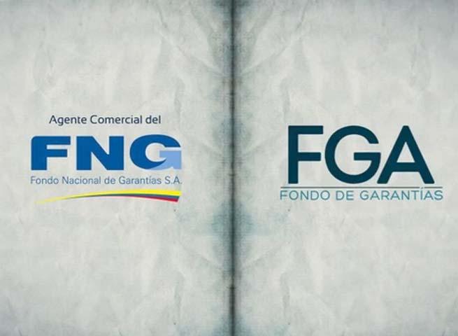 FGA cambio de imagen